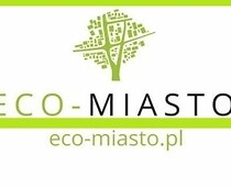 Eco-City contest logo