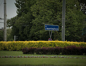 Lublin roundabouts full of flowers Foto