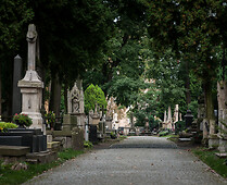 The Cemetary at Lipowa Street